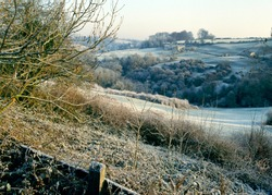 England, Glos, Cotswolds, Heavy frost valley Chalford