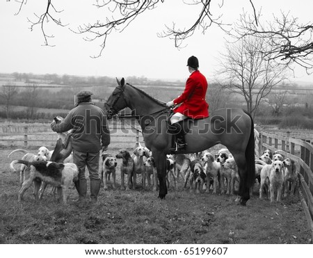England Hunt Scene with Horse and Hounds