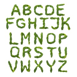 English alphabet from made from fresh green spinach leaves on a white isolated background. natural bonatic pattern made from leaves. Bright alphabet for  design