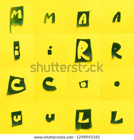 English alphabet letters from green tropical leaves each on yeloow textured. Original idea for school education from natural material. Inspiration for summer design #1298943181