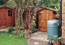 English back garden in Autumn with shed, archway and water butts