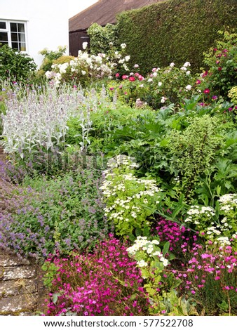 English cottage garden in mid summer with perennial flower border in english cottage garden in mid summer with perennial flower border in full bloom mightylinksfo