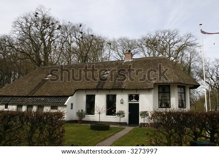 english cottage with thatched roof
