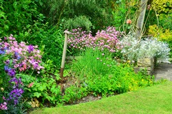 English country garden at the end of summer going into Autumn