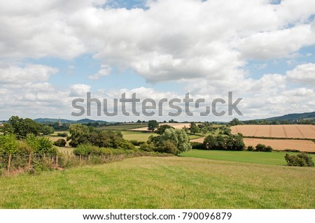 English countryside in the summertime.