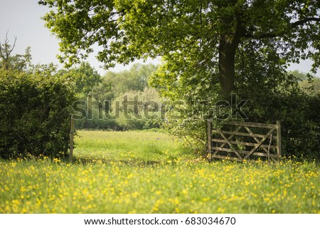 English countryside landscape image of meadow in Spring sunshine