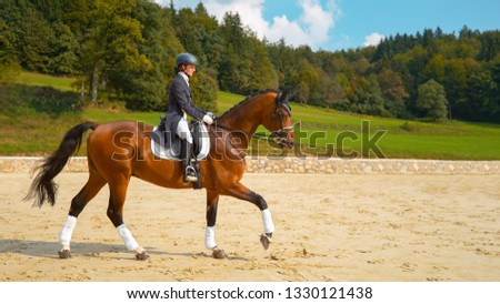 English dressage horseback rider galloping on her beautiful brown stallion during a competition. Young Caucasian woman in formal clothes riding her muscular chestnut gelding around the empty manege.