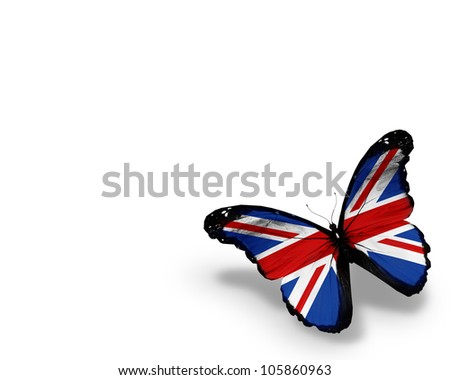 stock photo : English flag butterfly, isolated on white background
