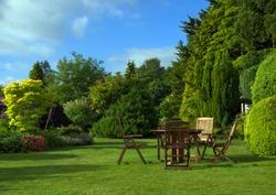 English garden in June