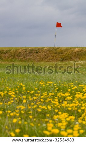 English links coastal golf course with spring flowers
