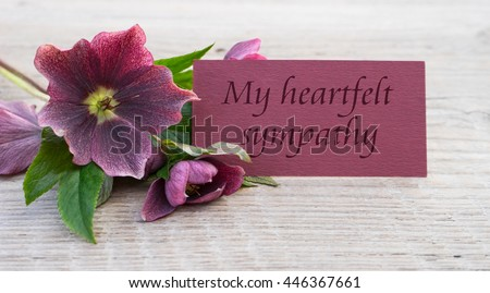 English Mourning card with purple hellebores /  my heartfelts sympathy / Mourning card