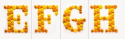 English number, digit or alphabate made with marigold or zendu from flowers