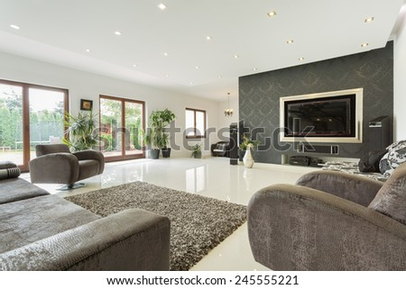 Enormous living room in expensive house, horizontal #245555221
