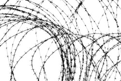 entangled barbed wire