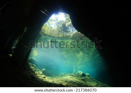 Entrance area of cenote underwater cave from below