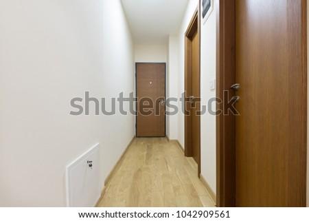 Entrance corridor, apartment interior #1042909561