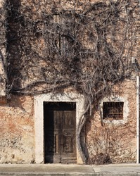 Entrance of an old abandoned house with a large dead climbing plant that completely obstructs the upper window