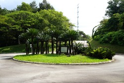 Entrance Signage Surrounded with Beautiful Palm Trees at roundabout in Wetlands Park, Putrajaya, Malaysia