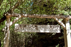 Entrance to Muir Woods. Wooden sign reads