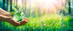 Environment Concept - Hands Holding Globe Glass In Green Meadow With Sunlight