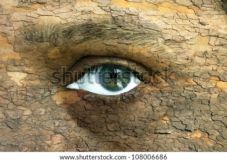 Environment concept - human face with an open eye covered in a tree bark texture