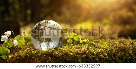Environment conservation concept. Close up of glass globe in the forest with copy space