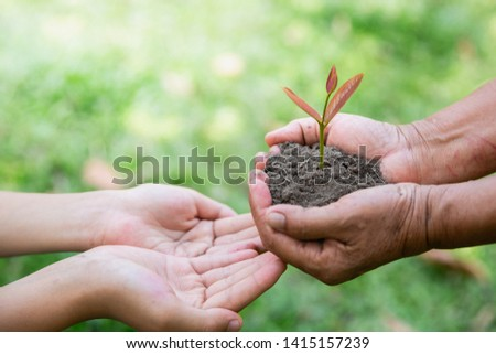 environment Earth Day In the hands of trees growing seedlings. Bokeh green Background Female hand holding tree on nature field grass Forest conservation concept,  reduce global warming. #1415157239