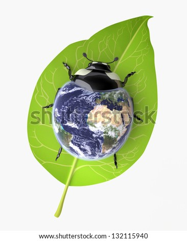 Environmental Conservation concept/ The Three-dimensional Beetle symbolizing Environmental Awareness and an Acceptance of Responsibility for the Care of our Earth; Globe mapping image provided by NASA