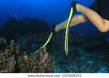 Environmental damage - scuba diver with poor buoyancy control kicks and damages coral #1325828333