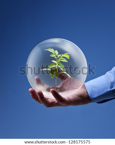 Environmental friendly business concept - businessman hand holding plant in glass sphere