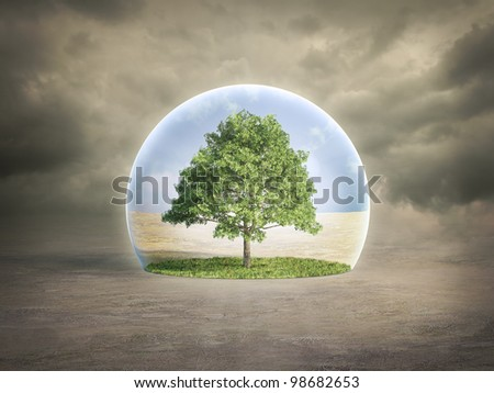 Environmental protection concept - tree in a bubble
