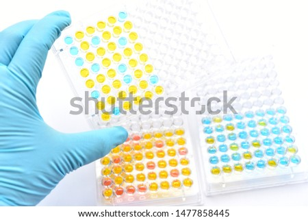 Enzyme-linked immunosorbent assay or ELISA plate, Immunology testing method in medical laboratory