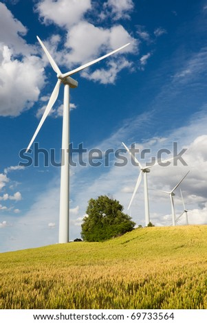 Eolic turbines, green field and clean energy concept