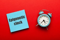Epigenetic clock concept. Biological aging of human body, research of old age.