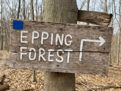 Epping Forest Trail sign with blue blaze trail marker and right turn warning at Dryer Road Bike Park in early Spring.