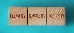 Equality transparency diversity words written on wooden cubes on aquamarine background. Equal rights social concept.