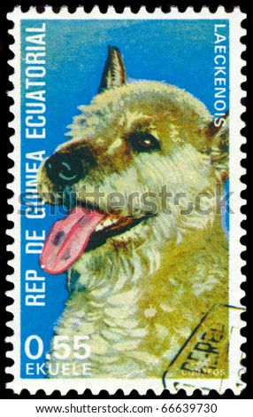 EQUATORIAL GUINEA - CIRCA 1974: A stamp printed by  EQUATORIAL GUINEA shows dog Laeckenois, series, circa 1974