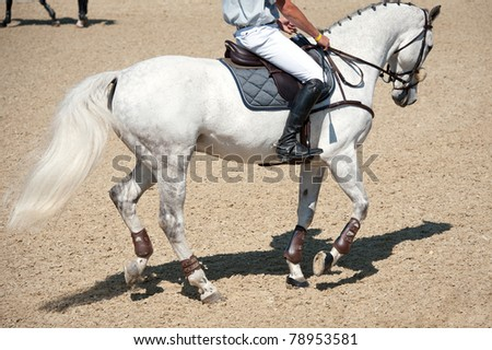 Equestrian horse with rider