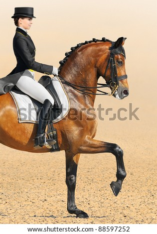 Equestrian sport - dressage (closeup of young woman and chestnut stallion)