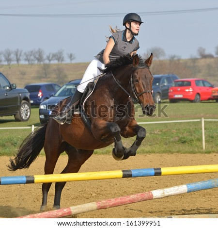 Equestrian sport: young girl in jumping show