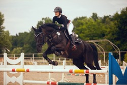 Equestrian sport - young girl rides on horse.