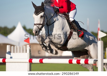 Equestrian Sports, Horse Jumping