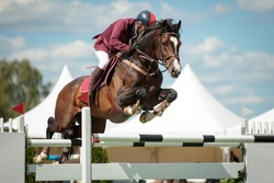 Equestrian Sports themed photo