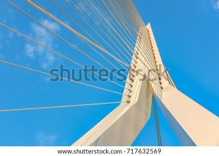 Erasmus bridge in Rotterdam city. South Holland, Netherlands.  #717632569