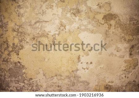 Eroded house wall due to humidity Foto stock ©