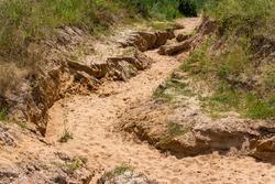 Erosion of sandy soil due to rainwater, ravine formation, soil erosion