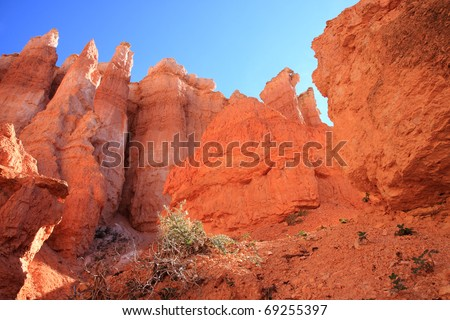 Erosion sculpted spires of colorful sandstone create a geological statuary of unusual luminous shapes towering above canyon and interspersed with green trees in Utah's Bryce Canyon National Park