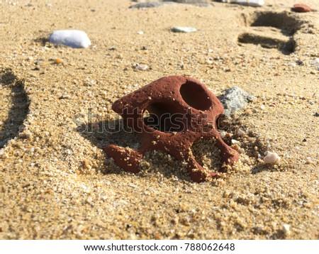erroded brick on the beach