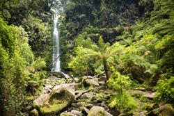 Erskine Falls waterfall in the Otways National Park along the Great Ocean Road, Australia
