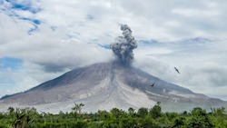Eruption of volcano with two birds threatened by the nature. Sinabung, Sumatra, Indonesia 28-09-2016